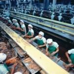 Bentuk-Bentuk Sarana Hubungan Industrial