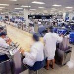 Mogok Kerja Sebagai Sebagai Salah Satu Hak Para Pekerja